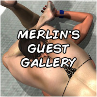 Merlin's NEW Artwork